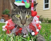 Jolly Jester cat hat and party collar for dogs and cats
