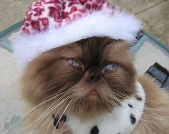Pink Beret - Wild Side Beret cat hat and tippet