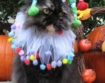 Jolly Jester hat for cats and dogs with Lifes a Ball party collar