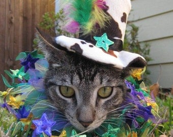 Mad Hatter Mardis Gras top hat and collar for cats or dogs