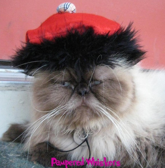 Red Beret - Brash Bohemian Beret for cats and dogs and Wild Side Tippet