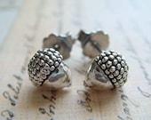 Acorns - Sterling Silver Post Earrings