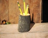 Rustic Hickory Log Pencil Holder