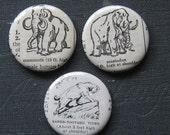 Extinct Animals Vintage Dictionary 3 Magnet Set