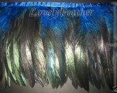 Coque feather fringe royal blue irridescent 10 yards trim