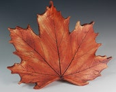 Large  Maple Leaf--Made from Real Wisconsin Maple Leaves--Thanksgiving Decor