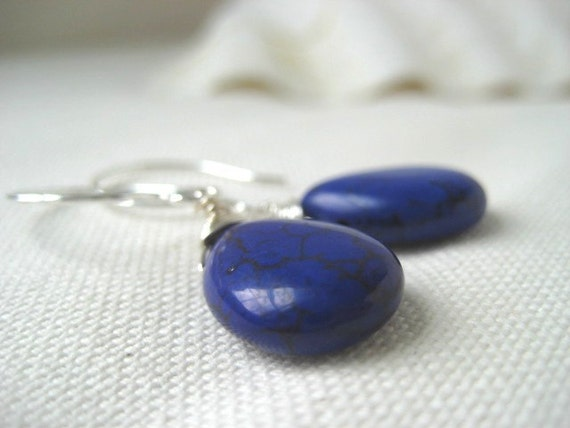Brilliant Blue Agate Sterling Silver Earrings