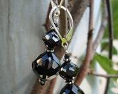 Elegant Black Crystal Earrings