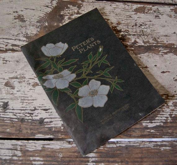 V I N T A G E Art Nouveau plant catalogue