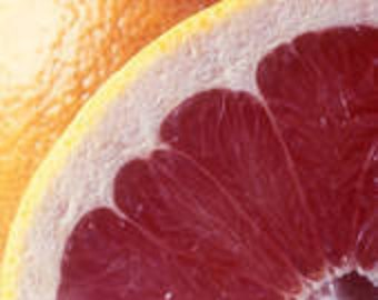1oz Juicy Pink Grapefruit Fragrance Oil