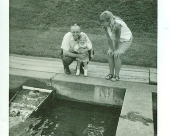 Vintage 1960s Photo At Kids at Fish Hatchery Daddy Tom Robby Lee 1967 Family Toddler Boy Litte Girl Pond Fishes
