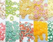 1000 Polymer Clay Cane Fruit Slices...Assorted...Fimo...Miniature...Nail art N1