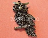 2 Large Owl Antique Bronze Pendant Charm...60mm x 30mm...N40