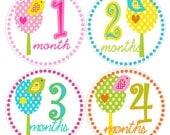 Monthly Onesie Stickers  Baby shower Gift  Bright FUN birds trees polka dots  Maine Mom