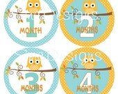 Baby OWLS  Monthly Onesie Stickers baby boy Gift Blue