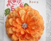 Orange Creamsicle Mumm Hair Flower Clip for Girls and Women with Multi Swarovski Crystal Center
