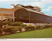 Vintage Postcard, Juarez, Mexico Greyhound Race Track
