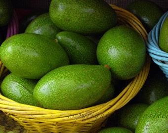 Fine Art Photograph - Baskets of Avocados