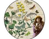 SALE: Vintage Botanical Inspired Pocket Mirror