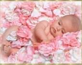 Custom listing for HMP0006 -Roses