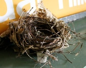 Natural Birds Nest Leaves and twigs to decorate your space