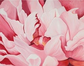 Pink Peony-Open Edition Print 12x18