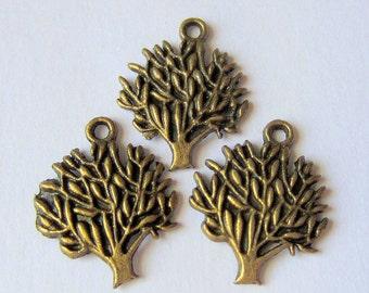 12 Tree charms bronze 22mm 17mm antique bronze metal jewelry supplies