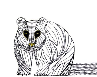 BEAR LINE DRAWING- Art by Thailan When