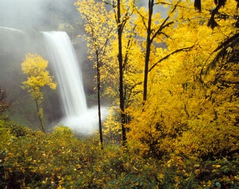 Autumn Photography Waterfall Photograph Fall Colors Yellow Leaves Trees Nature Photo Landscape nat15