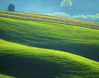 Tuscany Landscape, Italy Photography Italian Countryside Vineyard Photo Green Hills Umbria Wall Art ita17
