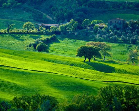Tuscany Photograph, Italy Photography, Italy Countryside Landscape Photo Umbria Spring Siena Chianti Fields ita15