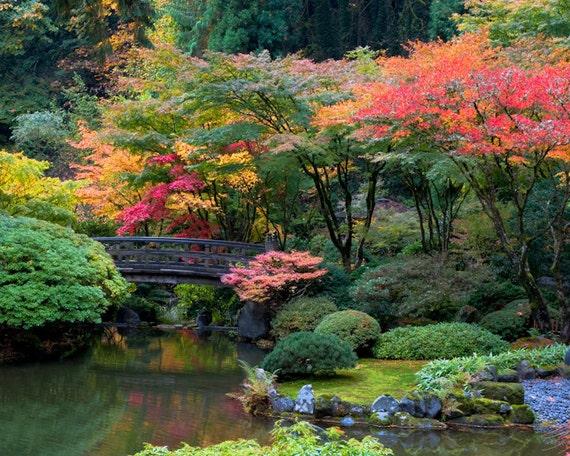 Japanese garden photo autumn photograph fall colors autumn for Japanese garden colors