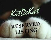Reserved Listing for livingdolldisaster