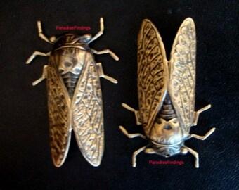 Cicada Necklace Component, Big Brass ox CICADA Bug, Drilled, NOT RAW