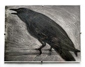 Single crow print from installation work