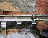 Fine Art Photo of the Scranton Bittenbender– on Canvas
