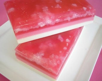 Salt Bar Soap -  Spiced Cranberry, Fall Soap, Holiday Soap, Shea Butter and Olive Oil, Autumn Soap, Exfoliating Soap, Cranberry Soap