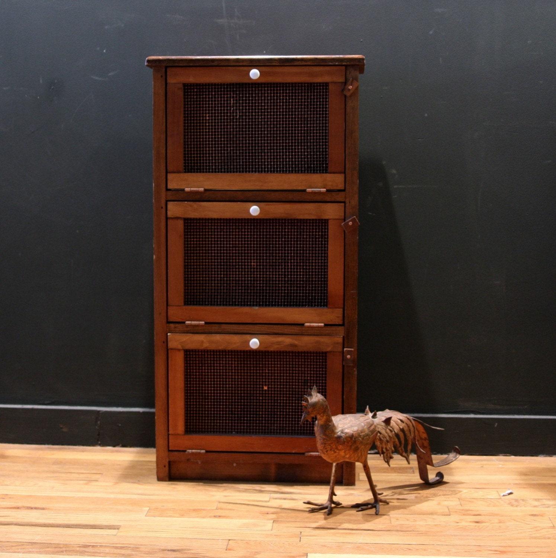 Chicken Wire Kitchen Cabinet Doors: Vintage Jelly Cabinet With Chicken Wire Doors