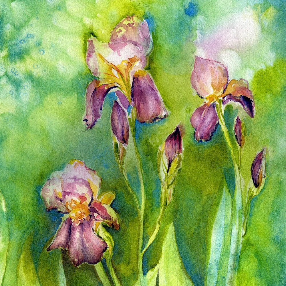Iris painting flower painting garden art watercolor for Spring flowers watercolor