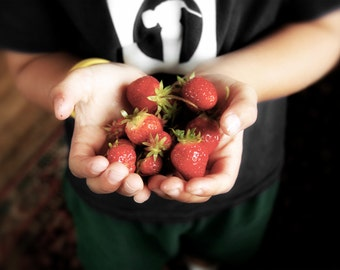 Wonder in a Child's Hands No 2 8x12 image Natural Learning No. 2