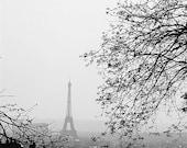 Paris Photo - Love Birds- 8x10 Signed Fine Art Photograph - French Art - Paris Photography