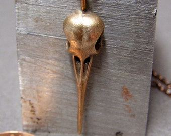 "Hummingbird Skull, Necklace Pendant (bronze) with 20"" inch chain"