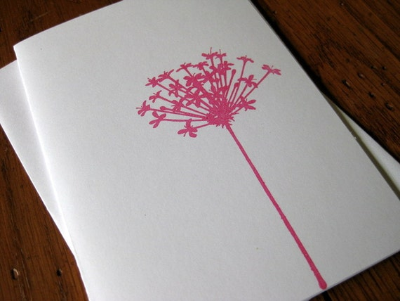 Hot Pink Queen Anns Lace Flower notecards - set of 5