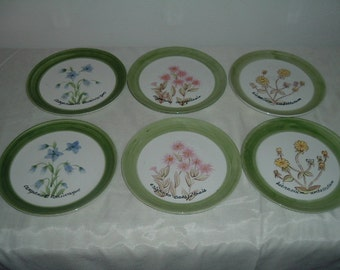 vintage set of six hand  painted  flower plates