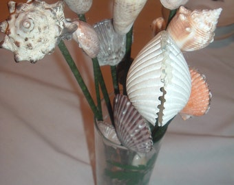 vintage vase with 16 homemade decorative sea shell on stems