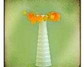 Orange Cascade 8x8 Fine Art Digital Photographic Print