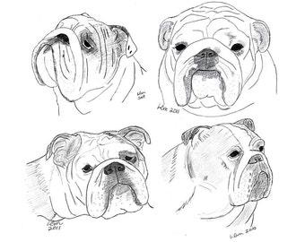 Bulldog Notecards (11)