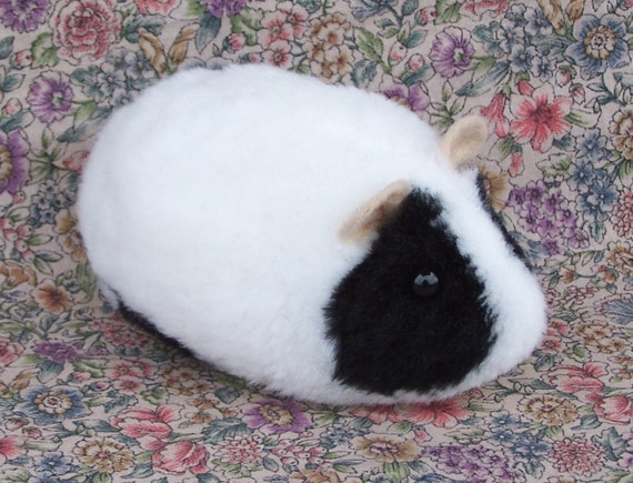 Black and White Hamster