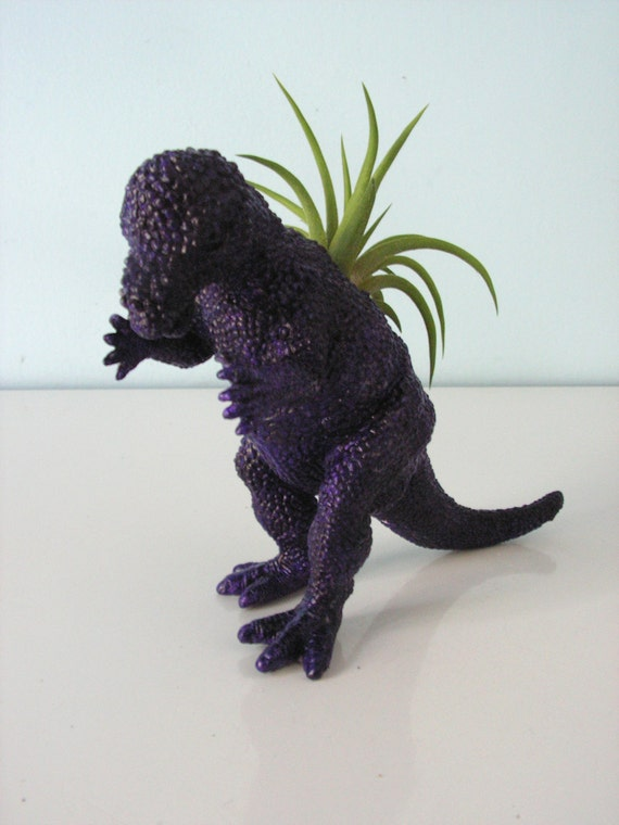 Upcycled Dinosaur Planter - Dark Purple Pachycephalosaurus with Tillandsia Air Plant