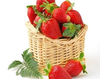Shea Mango Lip Butter-Strawberry-